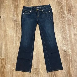 American Eagle Slim Boot Jeans